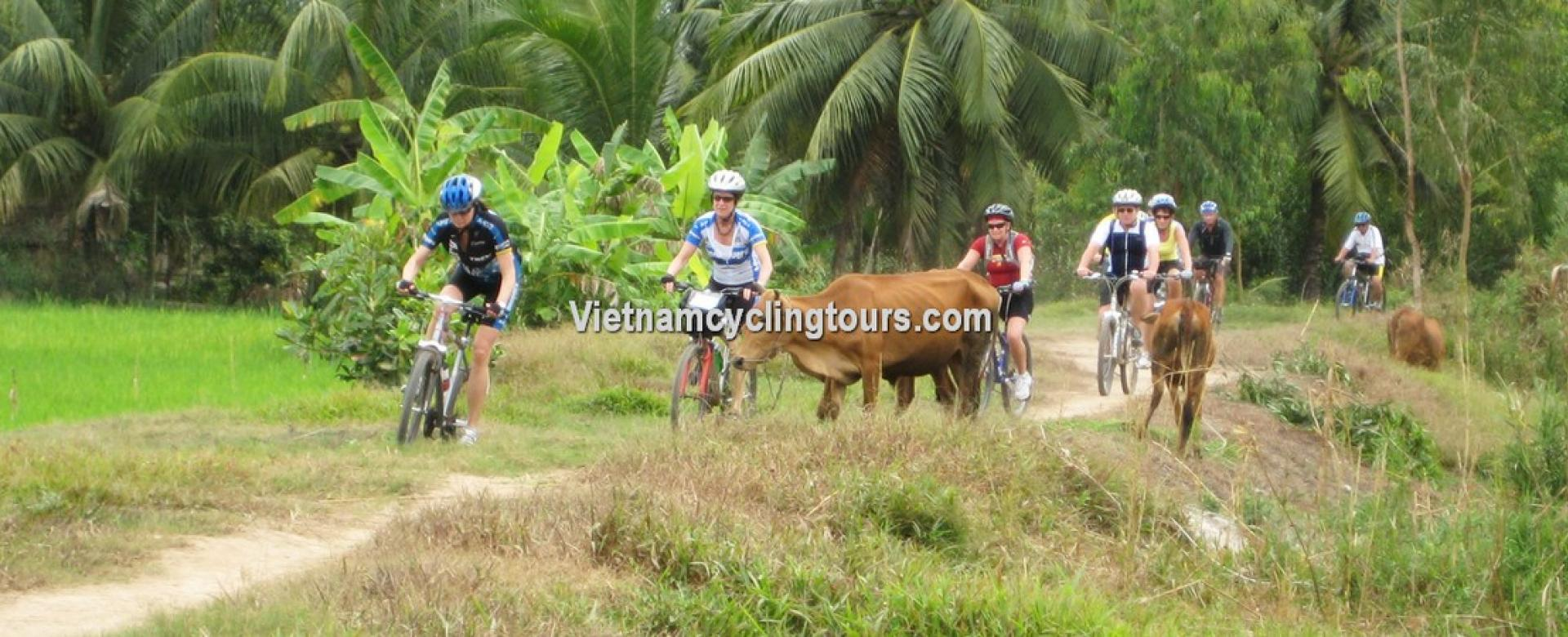 Cycle tour - Tra Vinh - Can Tho - Long Xuyen - Chau Doc