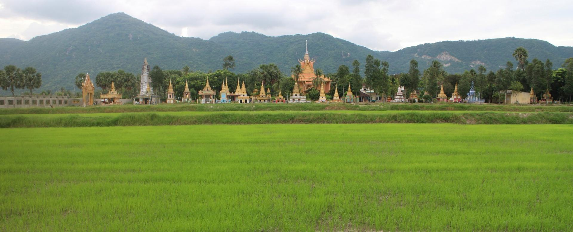 Cycling Mekong Delta 4 days/3 nights to Phnom Penh